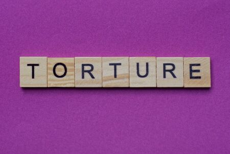 word torture from small gray wooden letters lies on a lilac background