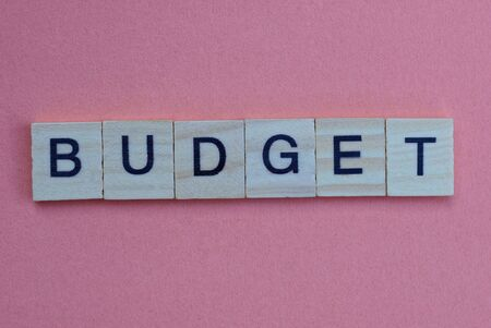 text from a short gray word budget made of small wooden letters with black font on a pink background