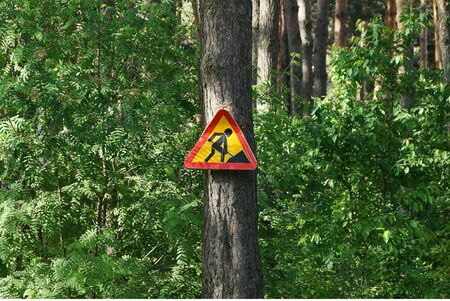 one road sign road works hanging on a pine tree among green vegetation in nature