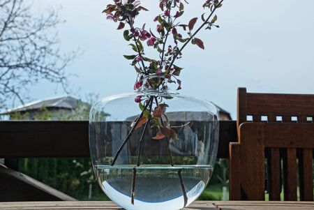 a glass round vase with water and cherry branches stands on a table on the street against the gray sky