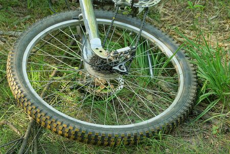 part of a gray bicycle wheel with a rim and knitting needles on the grass in the park