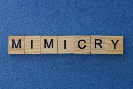 text on gray word mimicry in small wooden letters with black font on a blue background Standard-Bild
