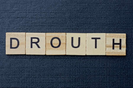 text on word drouth from gray wooden letters on a black background