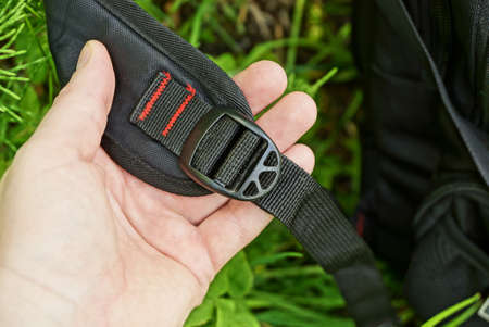 black harness strap made of fabric with a plastic carabiner in hand on a green grass fairway in nature Standard-Bild