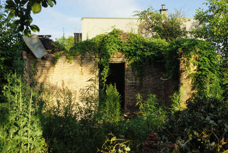 ruins of an old brown brick house with an empty entrance overgrown with green vegetation and grass