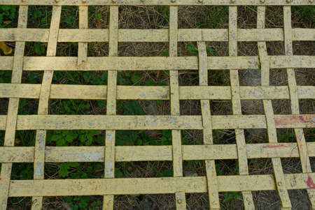 yellow metal texture from an old grate on a green background on the street 写真素材