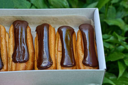 brown cakes in chocolate lie in a white paper box against a background of green vegetation Stockfoto