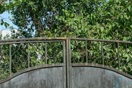 part of a gray metal gate with a wrought iron pattern on a background of green tree branches