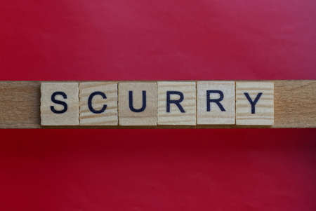 text the word scurry from gray wooden small letters with black font on an red table