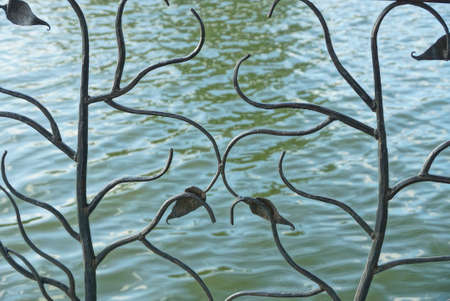 brown forged iron pattern in a decorative fence against the background of green waves and water of the reservoir Stockfoto
