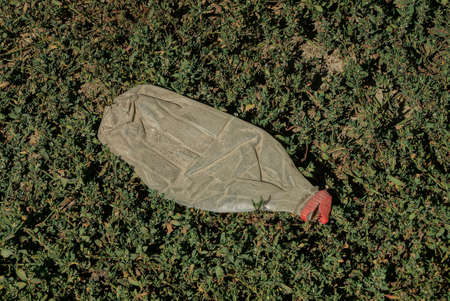 garbage from an empty one plastic bottle lies on green grass and dry leaves Stockfoto
