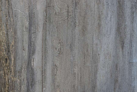 gray wooden texture from shabby old board in the wall