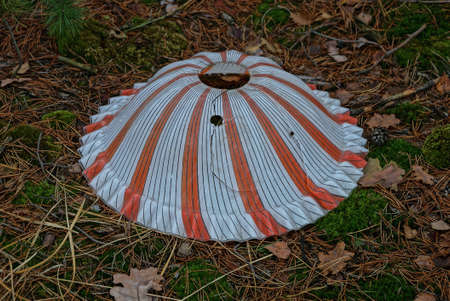 old round plastic striped lampshade for a table lamp red white with cracks and a hole lies on green moss and fallen leaves in nature