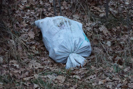 one large white bag with trash lies on dry gray grass and fallen leaves in nature Stockfoto