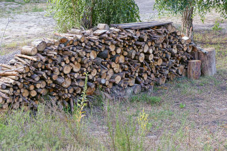 a big pile of brown logs and firewood lying on the street on the ground in green grass