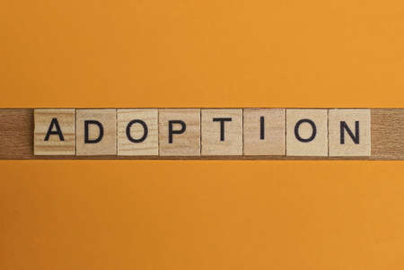 gray word adoption made of wooden square letters on brown background