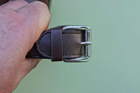 brown leather harness with a gray metal fastener hold on the fingers on a green background
