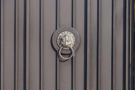 one brown bronze door handle with a lion head on a metal door in the street