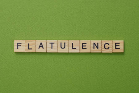 gray word flatulence from small wooden letters on a green table