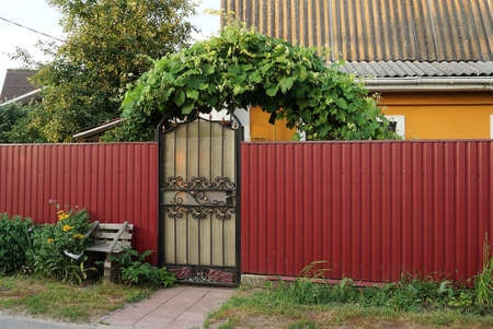 one gray closed door with a black forged pattern and a red iron fence in the street in green grass and vegetation Stockfoto
