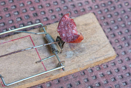 part on a one old dirty wood mouse trap with a piece of red sausage stands on a brown table