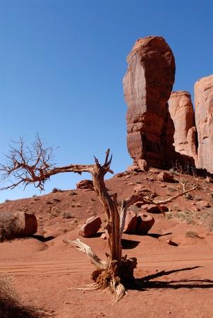john wayne: Beautiful Monument Valley