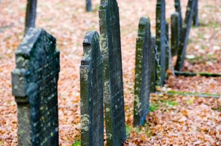 gravesite: A row of old gravestones on an cemetery in the autumn