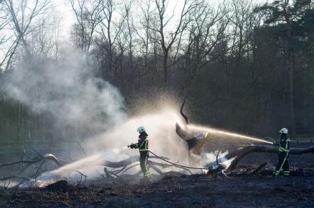 Enschede, Niederlande - 28. März: Zwei Feuerwehrleute versuchen, einen Waldbrand zu löschen. Nach einer Periode ohne regen der Wald ist sehr trocken, und das Feuer sehr leicht verbreiten. 28. März 2012. Editorial
