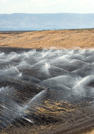 israel farming: Irrigating farmland in the Jordan valley in Istael between the Sea of Galilee and Beit She Stock Photo