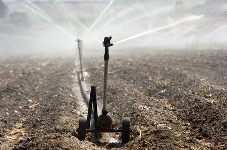 israel agriculture: Irrigating farmland in the Jordan valley in Israel