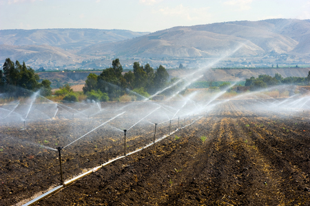 israel agriculture: Irrigating farmland in the Jordan valley in Istael between the Sea of Galilee and Beit She Stock Photo