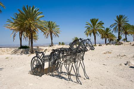 king solomon: Salomons horses on Tel-Megiddo National park Stock Photo