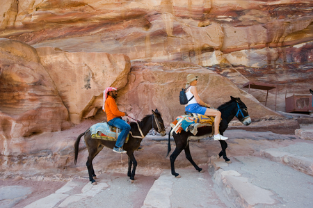 donkey: PETRA,  JORDAN - OCT 12, 2014: Two donkeys with his owner and a tourist are climbing up the long stairs to the