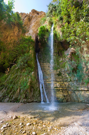 ein: One of the waterfalls of nature reserve Ein Gedi close to the dead sea in Israel