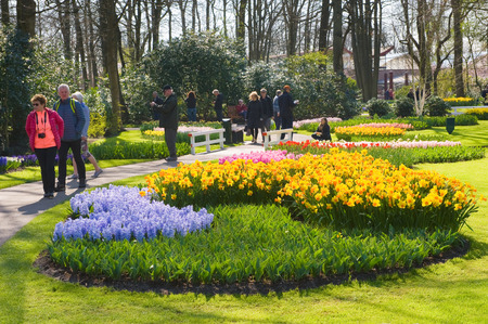 botanical garden: LISSE, THE NETHERLANDS, APRIL 11, 2016: Tourists are visiting the Keukenhofin the spring. The Keukenhof is a popular flower garden which is visited by a million tourists from all around the world. It is open for only six weeks every year.