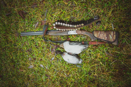 A double-barreled vertical rifle, a bandolier and two trophies-wild ducks on the grass. Autumn duck hunting.
