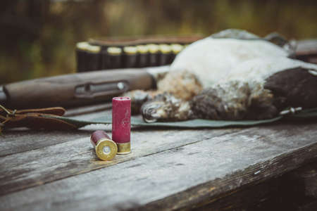 Two rounds in the foreground. A dead duck, a double-barreled shotgun in the background. Autumn duck hunting. Stock Photo