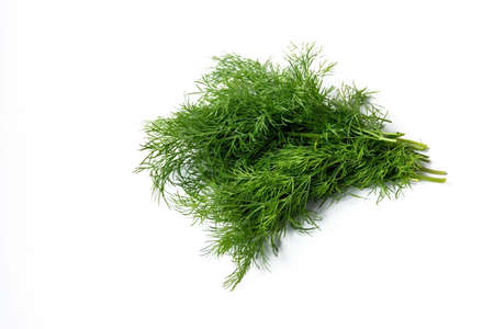 bunch of fresh dill on a white background.