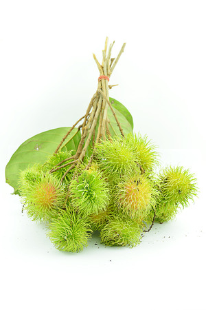 refers: Green rambutan, The rambutan is a medium-sized tropical tree in the family Sapindaceae. The name also refers to the fruit produced by this tree.