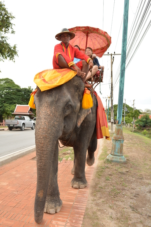 ancient elephant: AYUTTHAYA - July 31, 2015 :Tourists on an elephant ride tour of the ancient city Ayutaya a visit to the historic site on July 31, 2015, Ayutthaya city, Thailand. Editorial