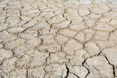 Drought and cracked earth