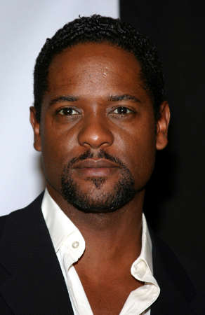 fulfillment: Blair Underwood attends the 19th Annual Fulfillment Fund Achievement Awards held at the Kodak Theatre in Hollywood, California, United States on June 11, 2005. Editorial