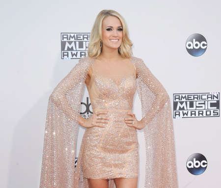 underwood: Carrie Underwood at the 2015 American Music Awards held at the Microsoft Theater in Los Angeles, USA on November 22, 2015.