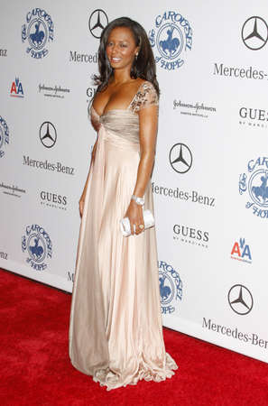 mel: BEVERLY HILLS, CA - OCTOBER 25, 2008: Mel B at the 30th Anniversary Carousel Of Hope Ball held at the Beverly Hilton Hotel in Beverly Hills, USA on October 25, 2008.
