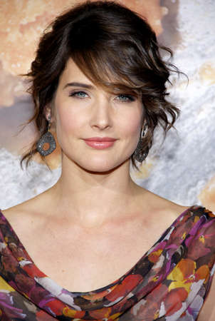 Cobie Smulders at the Los Angeles premiere of American Reunion held at the Graumans Chinese Theater in Hollywood on March 19, 2012.