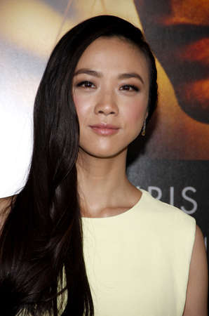 wei: Wei Tang at the Los Angeles premiere of Blackhat held at the TCL Chinese Theatre in Hollywood on January 8, 2015.