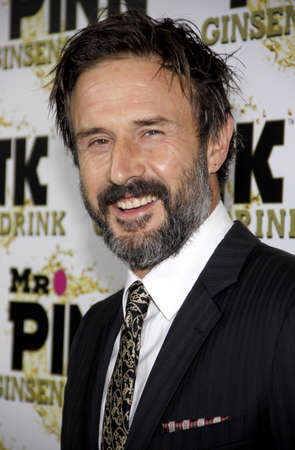 David Arquette at the Mr. Pink Ginseng Drink Launch Party held at the Regent Beverly Wilshire Hotel in Beverly Hills, USA on October 11, 2012. Publikacyjne