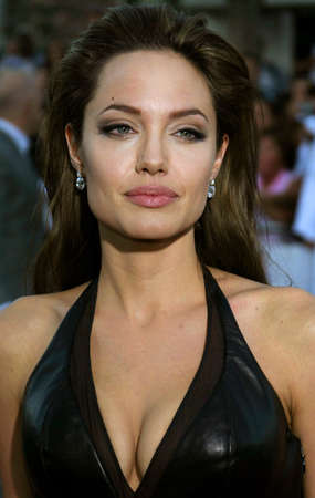 Angelina Jolie at the Los Angeles Premiere of Mr. & Mrs. Smith held at the Manns Village Theater in Westwood, USA on June 7, 2005.