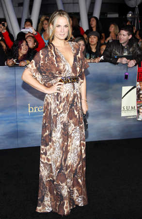 amanecer: Molly Sims en la premier de Los Ángeles de 'La Saga Crepúsculo: Amanecer - Parte 2' celebrada en el Nokia Theatre LA Live en Los Angeles el 12 de noviembre de 2012.