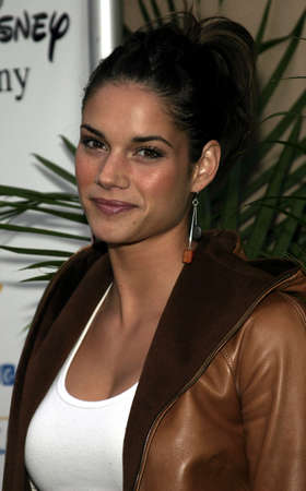 Missy Peregrym at the Hollywoods Helping Hands art auction at the Avalon Theater in Hollywood, USA on June 2, 2005. Editorial